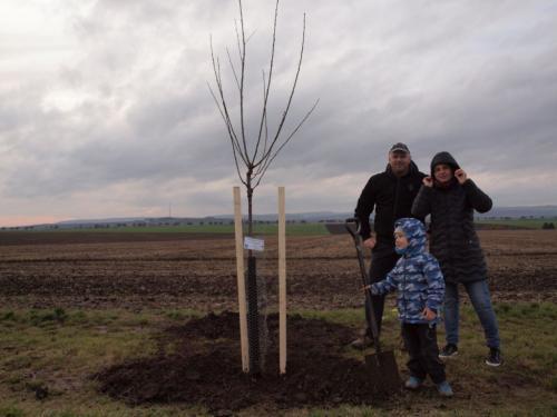 Saďme stromky pro potomky